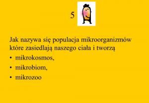 quizz 5
