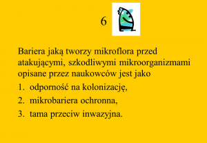 quizz 6
