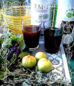 ferment-pigwa