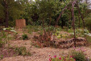Ogród z EM