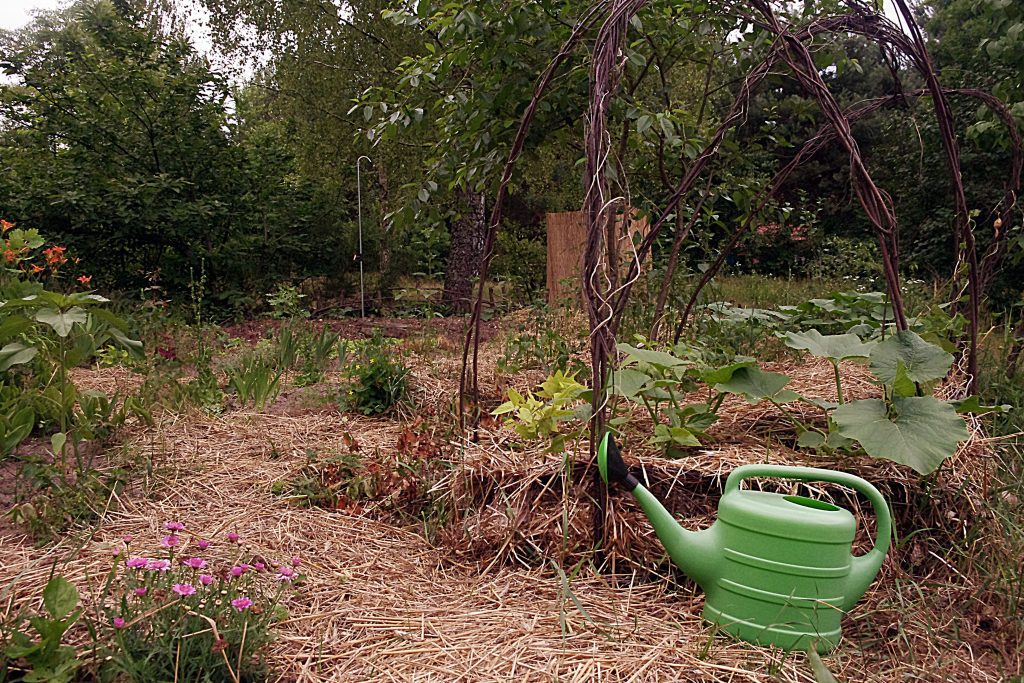 Ogród z EM2