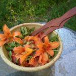 sałatka ze smolinosów
